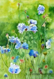 Blaues Wunder (Kornblumen)